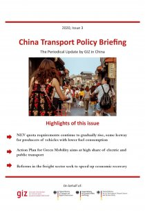3 Policy_Briefing_2020_Issue-3_Title-page